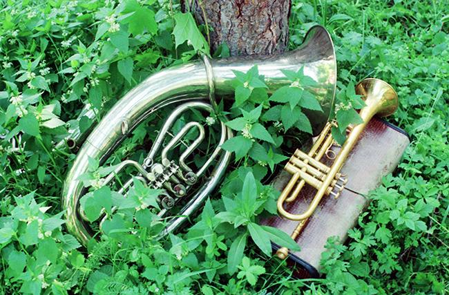 Brass in Nettles