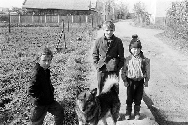 Boys with Their Dog