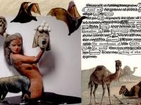 Camel bat